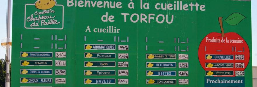Torfou